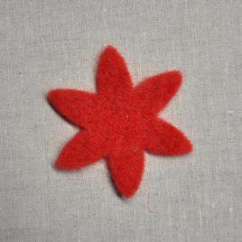 Fiore stella Pannolana media